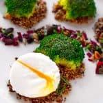 Pochiertes Ei, vom Weg abgekommen im Brokkoli-Wald