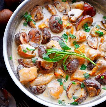 Hühnerbrust im Champignonrahm